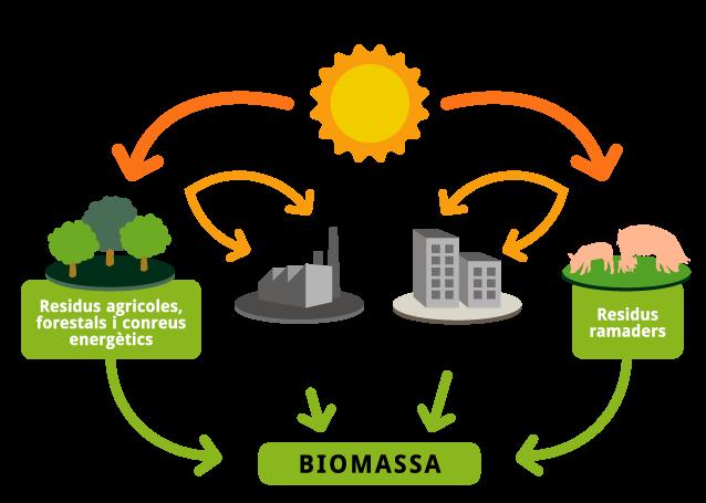 Biomasa Lumperlux